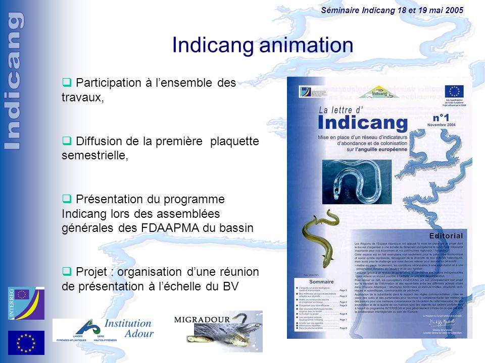 Séminaire Indicang 18 et 19 mai 2005 Indicang animation Participation à lensemble des travaux, Diffusion de la première plaquette semestrielle, Présen