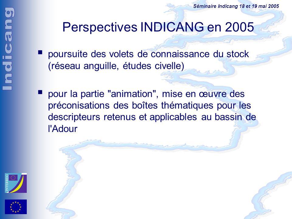 Séminaire Indicang 18 et 19 mai 2005 Perspectives INDICANG en 2005 poursuite des volets de connaissance du stock (réseau anguille, études civelle) pou