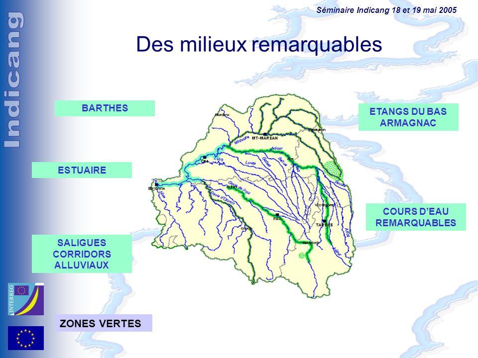 Séminaire Indicang 18 et 19 mai 2005 Des milieux remarquables ESTUAIRE COURS DEAU REMARQUABLES BARTHES SALIGUES CORRIDORS ALLUVIAUX ETANGS DU BAS ARMA