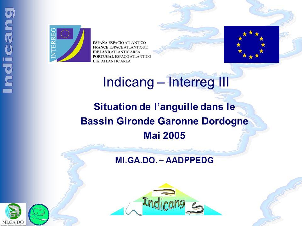 Séminaire Indicang 18 et 19 mai 2005 Indicang – Interreg III Situation de languille dans le Bassin Gironde Garonne Dordogne Mai 2005 MI.GA.DO. – AADPP
