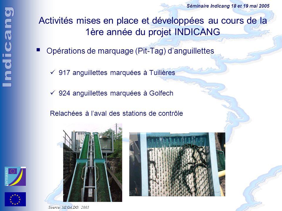 Séminaire Indicang 18 et 19 mai 2005 Activités mises en place et développées au cours de la 1ère année du projet INDICANG Opérations de marquage (Pit-