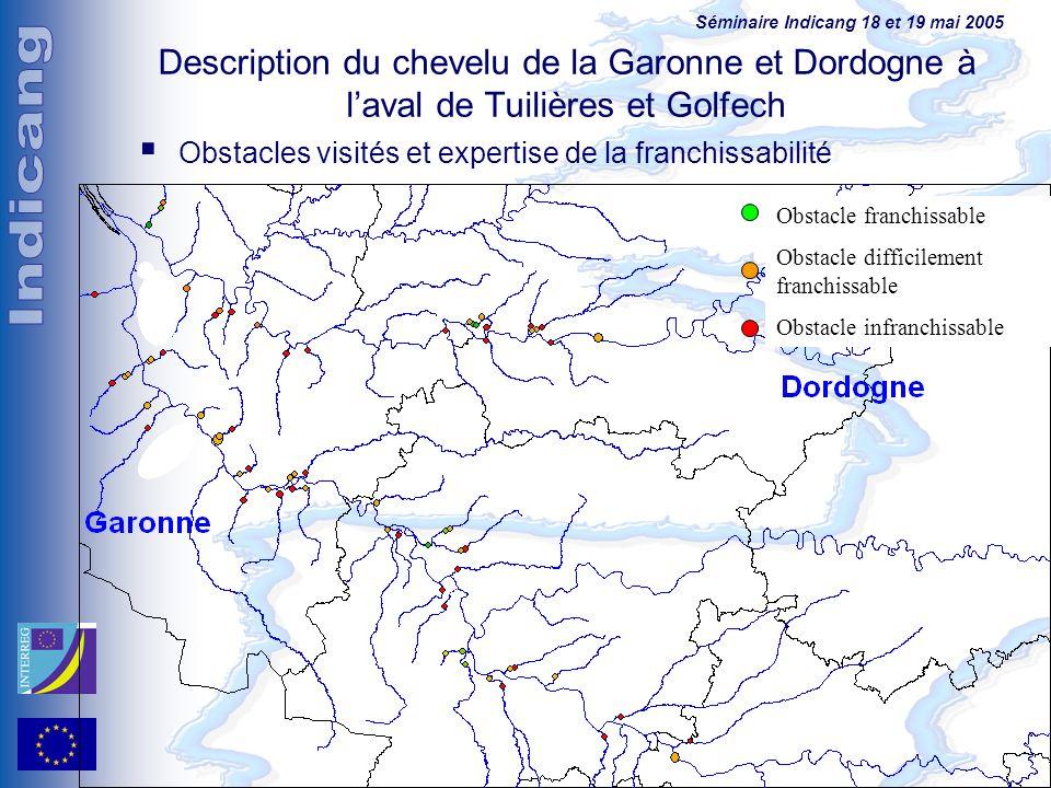 Séminaire Indicang 18 et 19 mai 2005 Description du chevelu de la Garonne et Dordogne à laval de Tuilières et Golfech Obstacles visités et expertise d