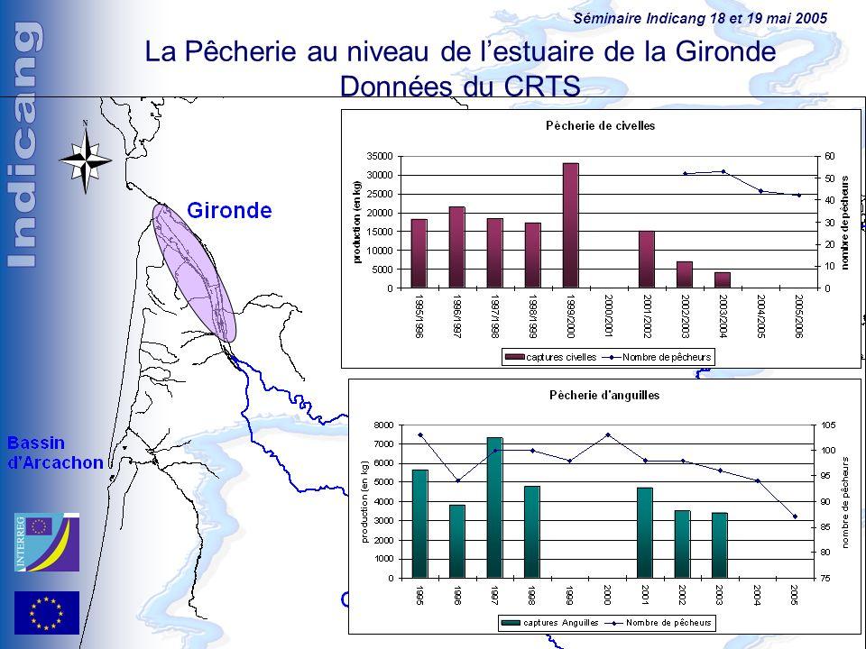 Séminaire Indicang 18 et 19 mai 2005 La Pêcherie au niveau de lestuaire de la Gironde Données du CRTS