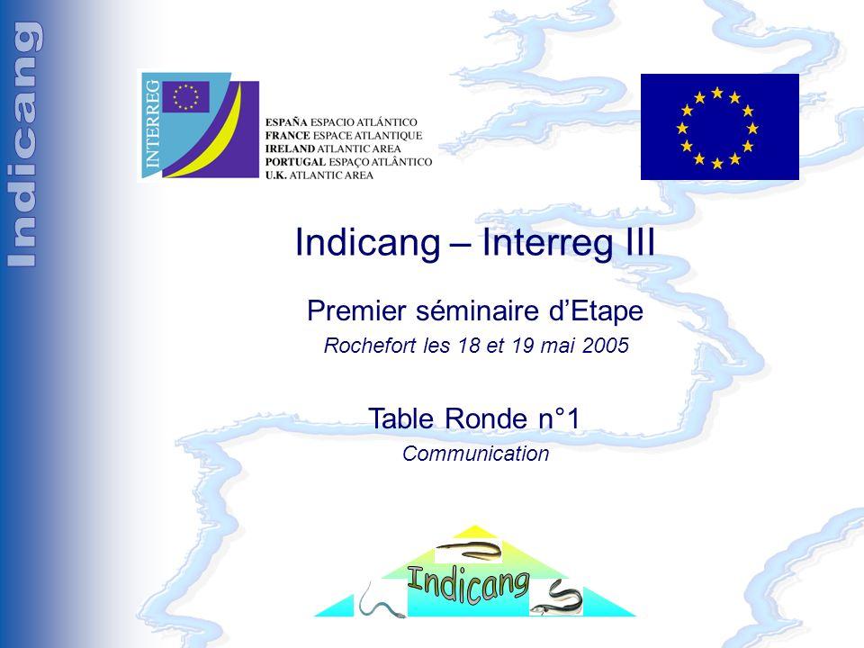 Premier Séminaire détape (Rochefort les 18 et 19 mai 2005) Indicang – Interreg III Premier séminaire dEtape Rochefort les 18 et 19 mai 2005 Table Ronde n°1 Communication