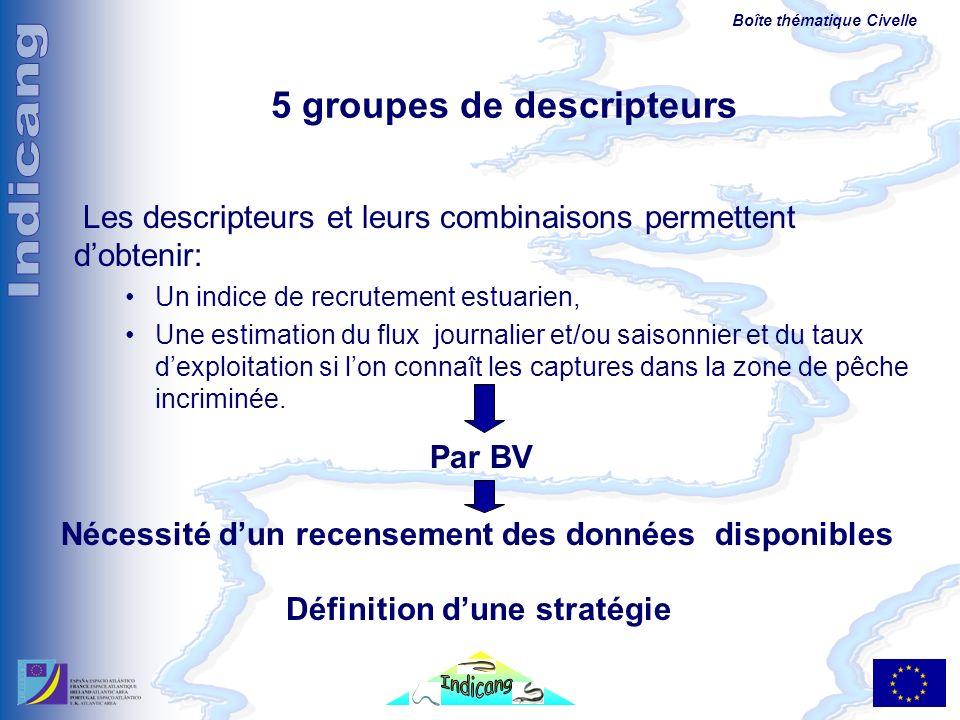 Boîte thématique Civelle 5 groupes de descripteurs Les descripteurs et leurs combinaisons permettent dobtenir: Un indice de recrutement estuarien, Une