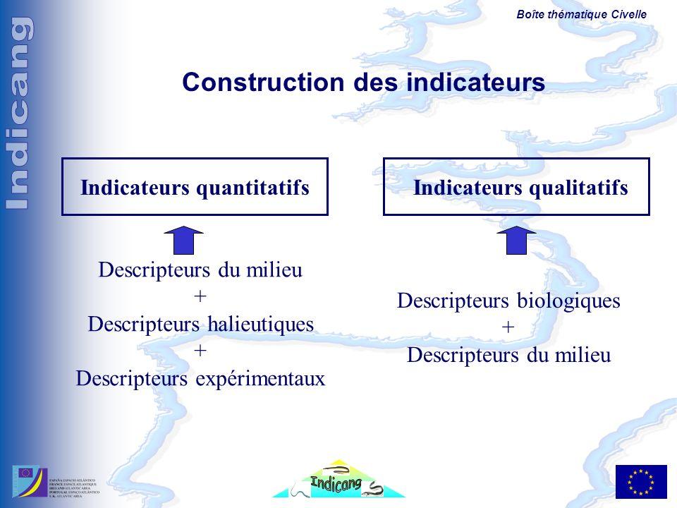Boîte thématique Civelle Construction des indicateurs Indicateurs quantitatifsIndicateurs qualitatifs Descripteurs biologiques + Descripteurs du milie