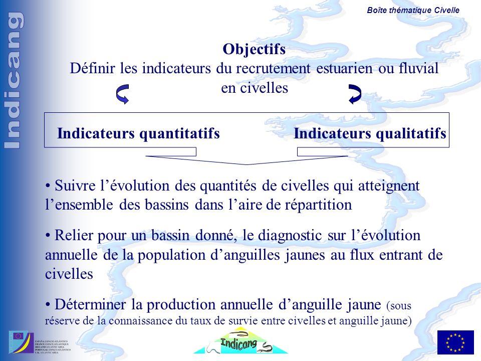 Boîte thématique Civelle Objectifs Définir les indicateurs du recrutement estuarien ou fluvial en civelles Indicateurs quantitatifsIndicateurs qualita