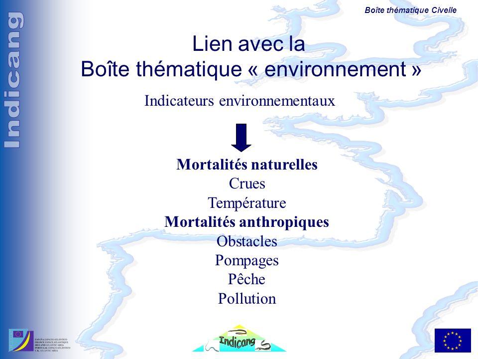 Boîte thématique Civelle Indicateurs environnementaux Lien avec la Boîte thématique « environnement » Mortalités naturelles Crues Température Mortalit