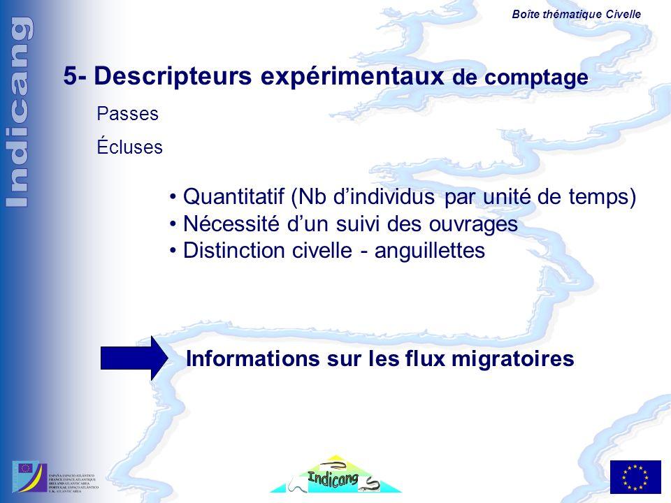 Boîte thématique Civelle 5- Descripteurs expérimentaux de comptage Passes Écluses Quantitatif (Nb dindividus par unité de temps) Nécessité dun suivi d