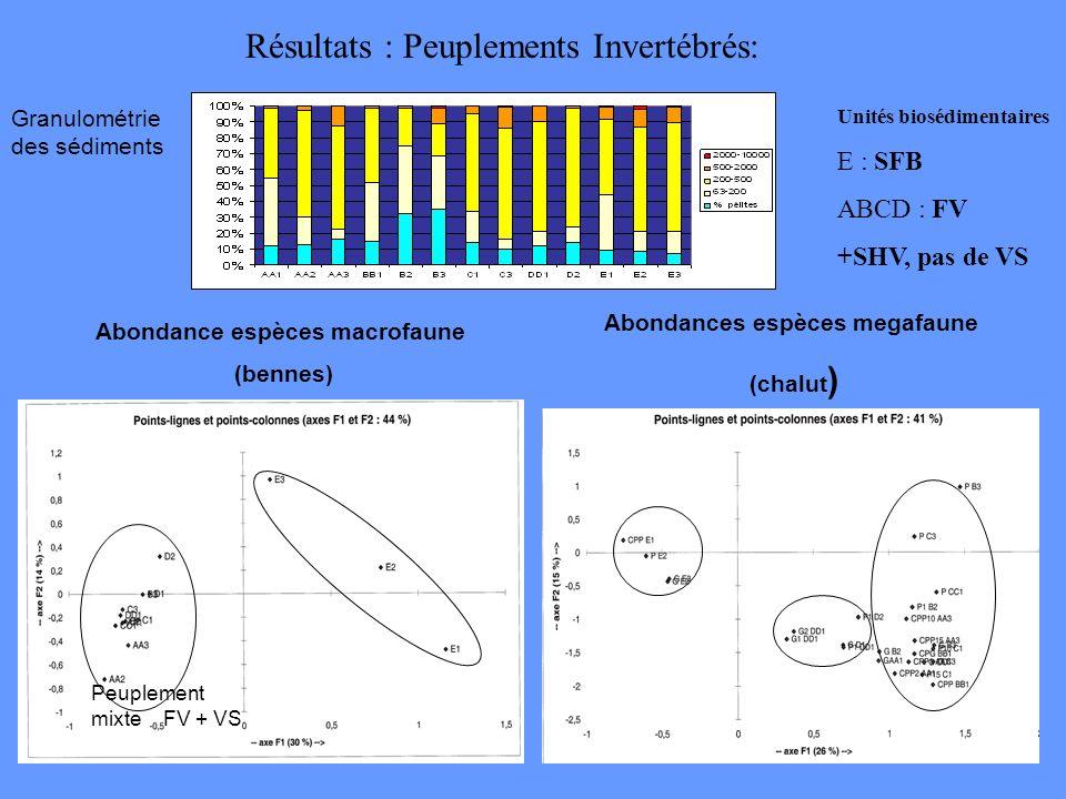 Résultats : Peuplements Invertébrés: Abondance espèces macrofaune (bennes) Abondances espèces megafaune (chalut ) Granulométrie des sédiments Unités b