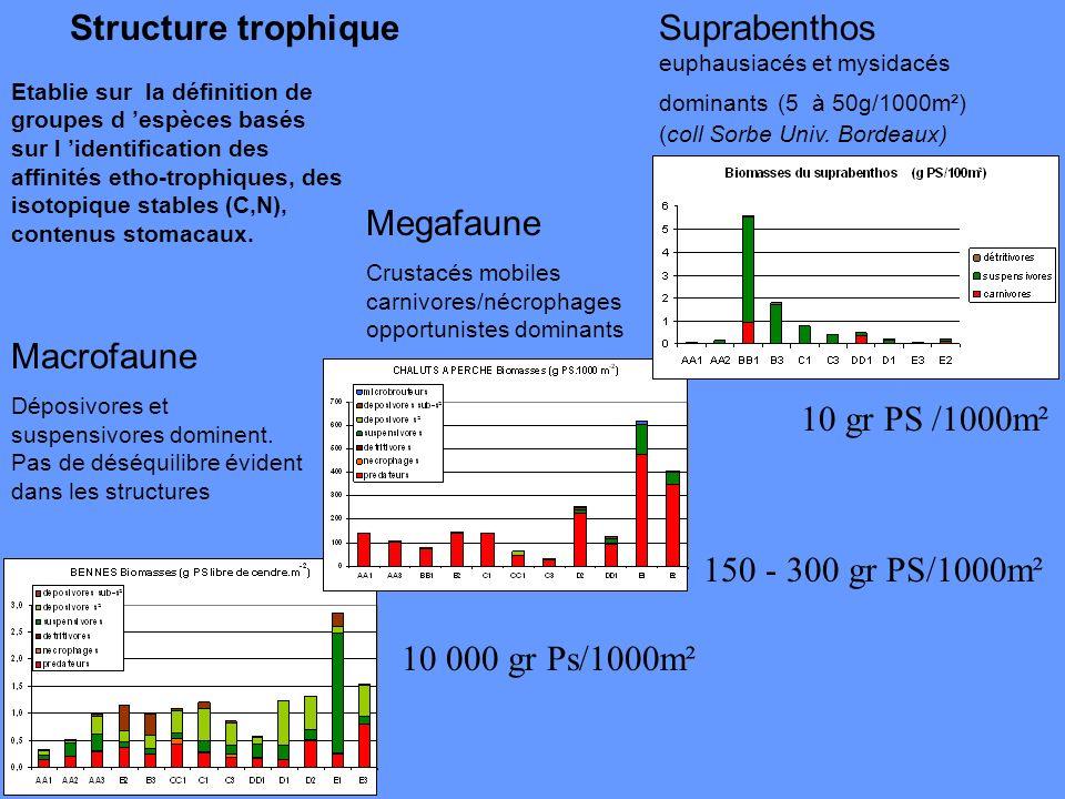Structure trophique Macrofaune Déposivores et suspensivores dominent. Pas de déséquilibre évident dans les structures Etablie sur la définition de gro