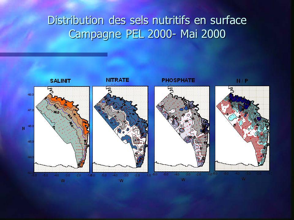 Distribution des sels nutritifs en surface Campagne PEL 2000- Mai 2000