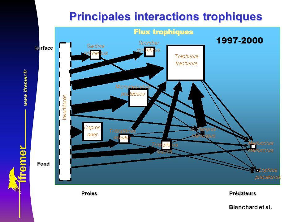 Blanchard et al.SurfaceFond ProiesPrédateurs Flux trophiques 1997-2000 Principales interactions trophiques