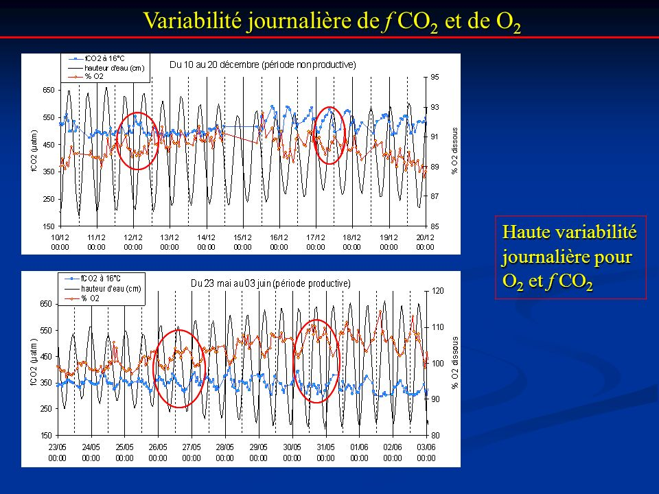 Variabilité journalière de f CO 2 et de O 2 Variabilité journalière de f CO 2 et de O 2 Haute variabilité journalière pour O 2 et f CO 2