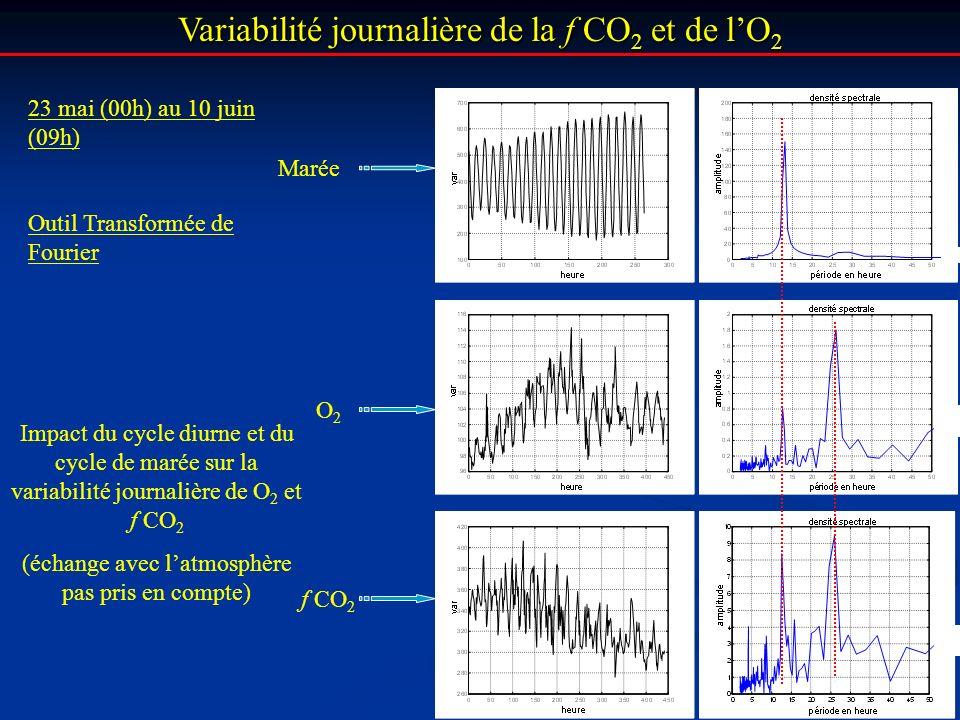 Variabilité journalière de la f CO 2 et de lO 2 Impact du cycle diurne et du cycle de marée sur la variabilité journalière de O 2 et f CO 2 (échange a