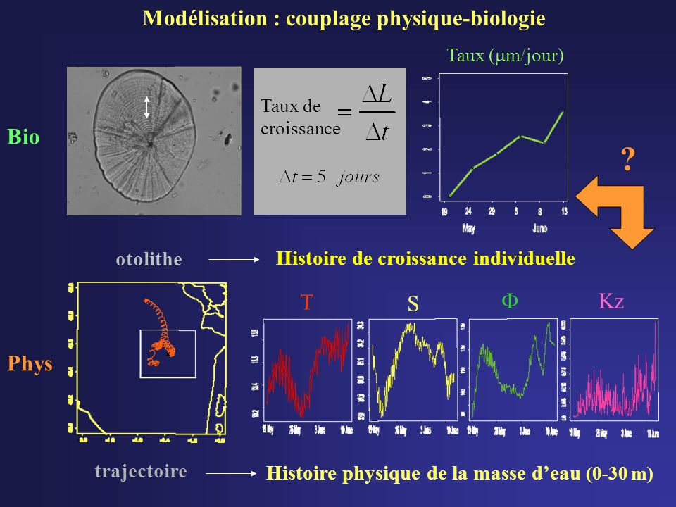 Bio otolithe Phys Histoire physique de la masse deau (0-30 m) trajectoire T S Kz .