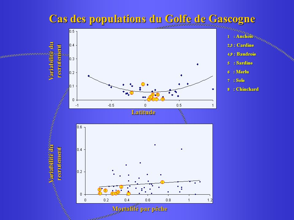 Cas des populations du Golfe de Gascogne Variabilité du recrutement Latitude Mortalité par pêche 1 : Anchois 2,3 : Cardine 4,9 : Baudroie 5 : Sardine 6 : Merlu 7 : Sole 8 : Chinchard 1 2 3 4 5 6 7 8 9 1 2 7 4 5 8 36 9