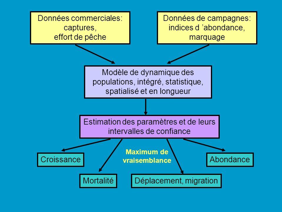 spatialisé : distribution hétérogène des poissons, et des flottilles les exploitant.