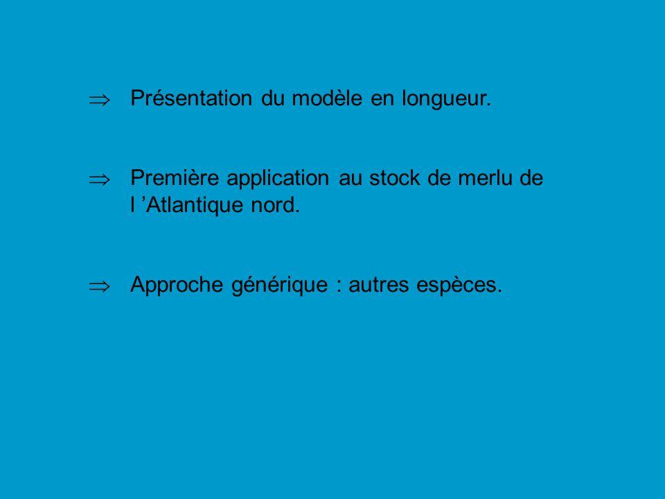 Présentation du modèle en longueur.Première application au stock de merlu de l Atlantique nord.