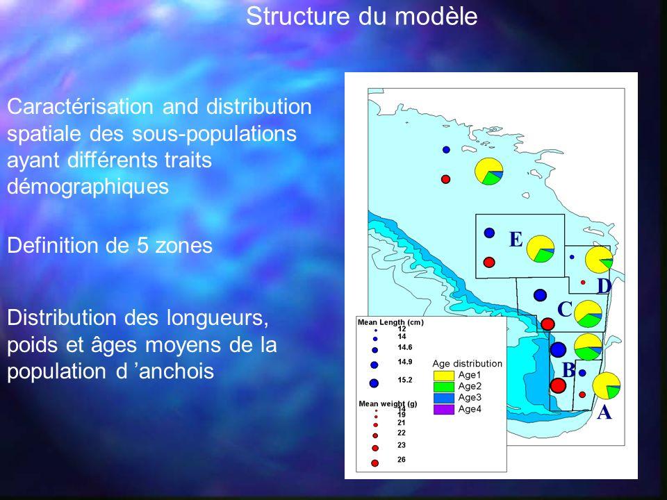 Distribution des longueurs, poids et âges moyens de la population d anchois A E D C B Caractérisation and distribution spatiale des sous-populations a