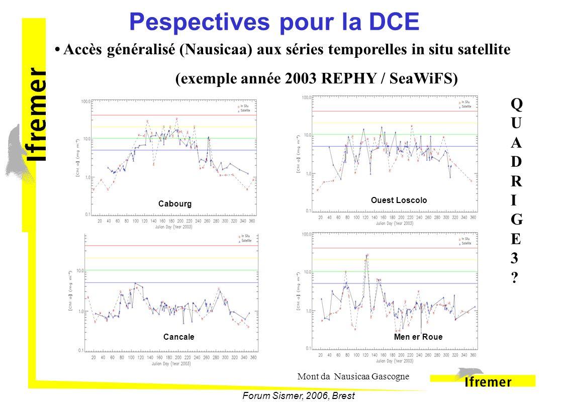 Forum Sismer, 2006, Brest Pespectives pour la DCE Cabourg Ouest Loscolo CancaleMen er Roue Accès généralisé (Nausicaa) aux séries temporelles in situ