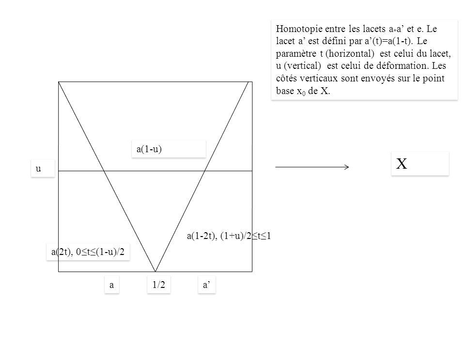X X 1/2 a(2t), 0t(1-u)/2 a a a(1-u) u u a a a(1-2t), (1+u)/2t1 Homotopie entre les lacets a * a et e.