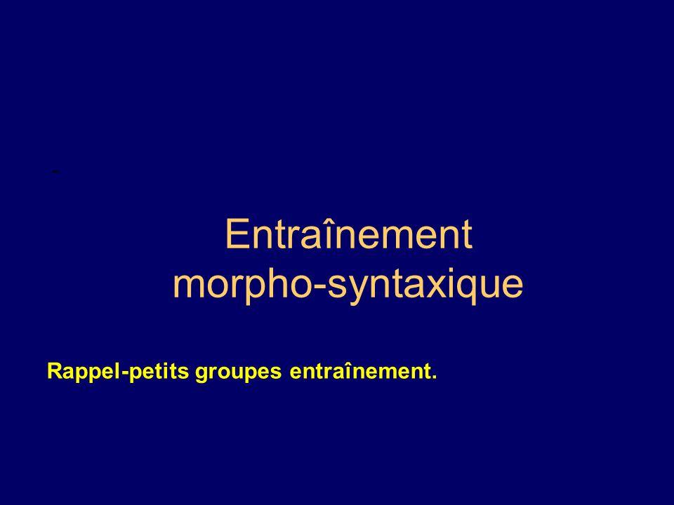 Entraînement morpho-syntaxique - Rappel-petits groupes entraînement.