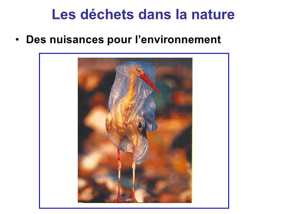 Les déchets dans la nature Des nuisances pour lenvironnement