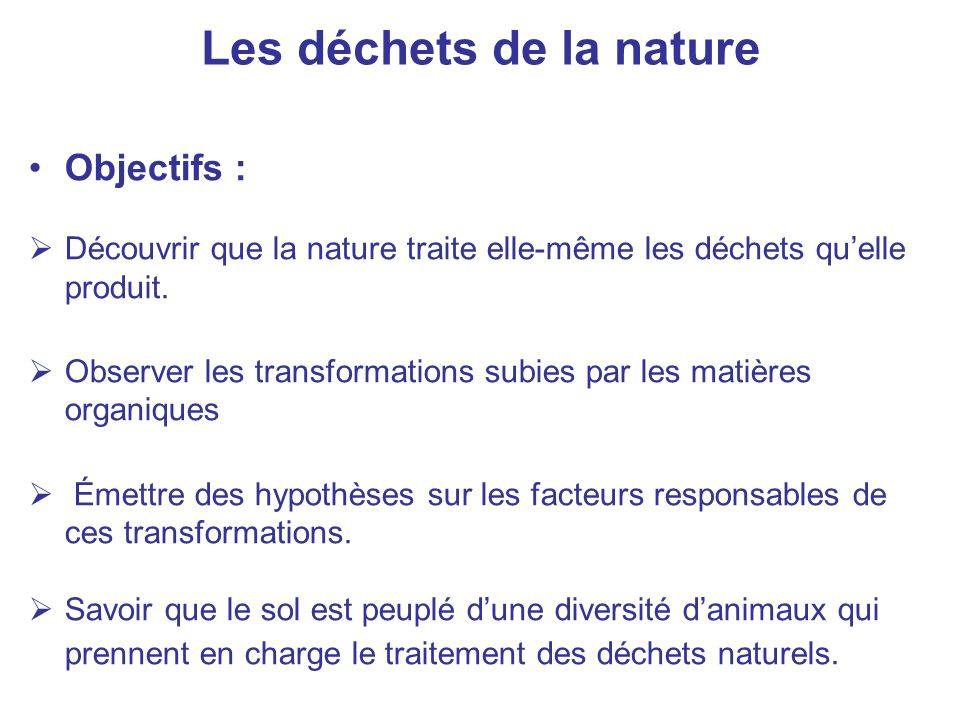 Les déchets de la nature Objectifs : Découvrir que la nature traite elle-même les déchets quelle produit. Observer les transformations subies par les