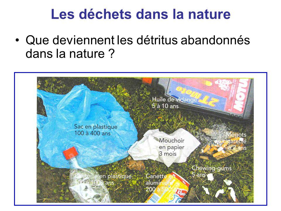 Les déchets dans la nature Questions Quelles dégradations subissent-ils au cours du temps .