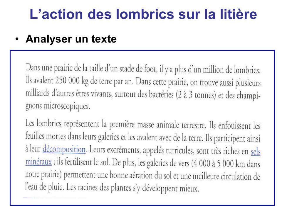 Laction des lombrics sur la litière Analyser un texte