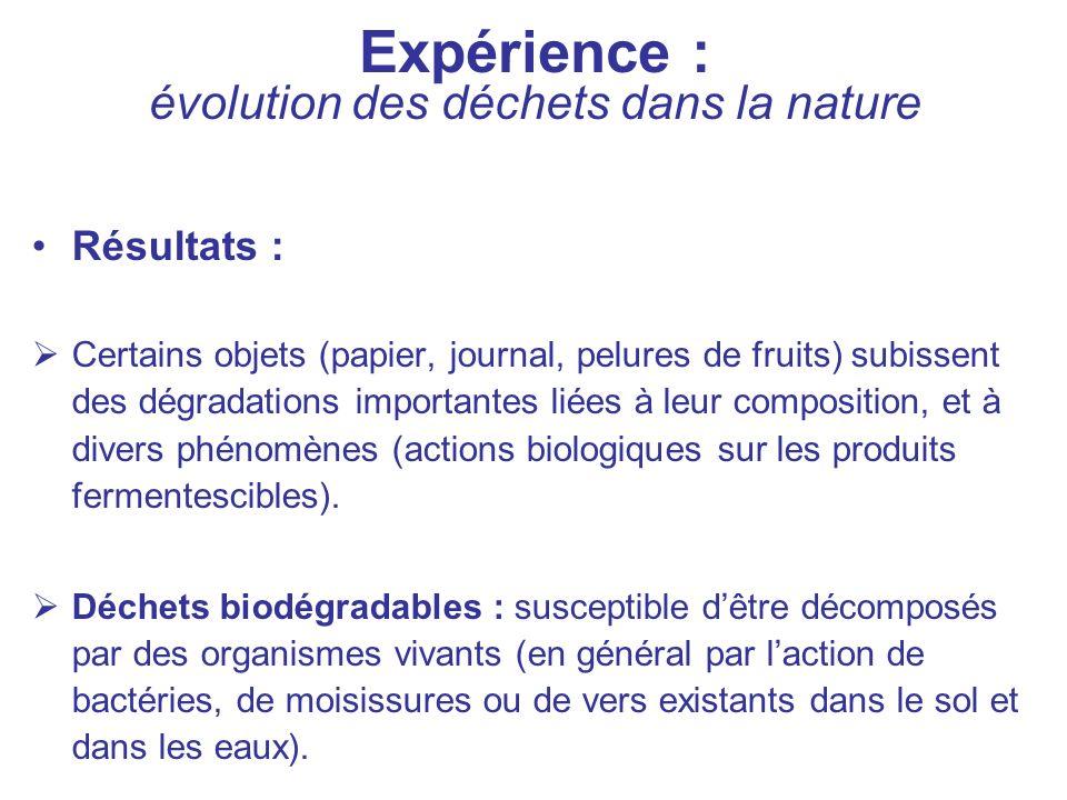 Expérience : évolution des déchets dans la nature Résultats : Certains objets (papier, journal, pelures de fruits) subissent des dégradations importan