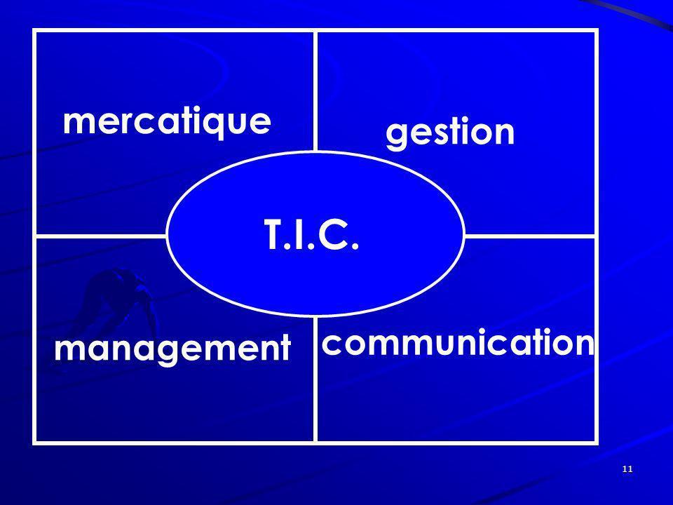 11 mercatique gestion management communication T.I.C.