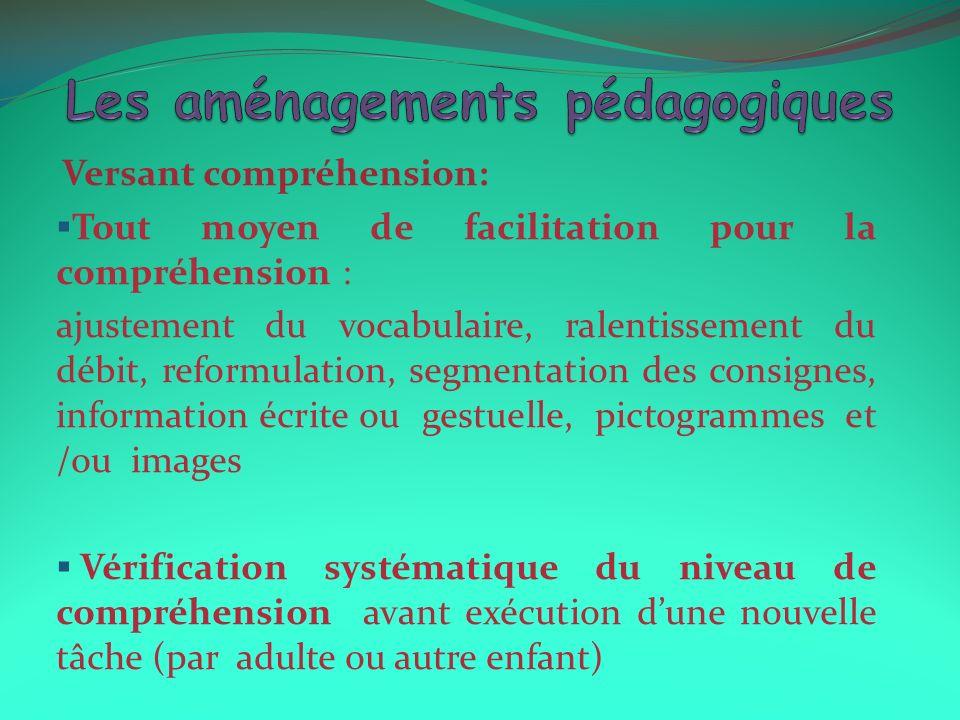 Versant compréhension: Tout moyen de facilitation pour la compréhension : ajustement du vocabulaire, ralentissement du débit, reformulation, segmentat