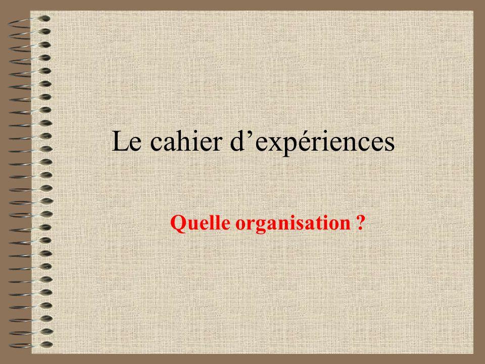 Le cahier dexpériences Quelle organisation ?