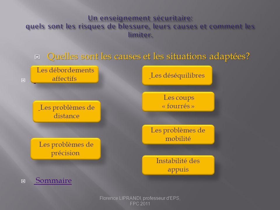 Quelles sont les causes et les situations adaptées? Quelles sont les causes et les situations adaptées?. Sommaire Sommaire Les débordements affectifs