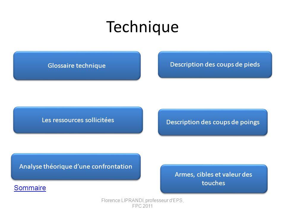 Technique Sommaire Armes, cibles et valeur des touches Armes, cibles et valeur des touches Description des coups de poings Glossaire technique Analyse