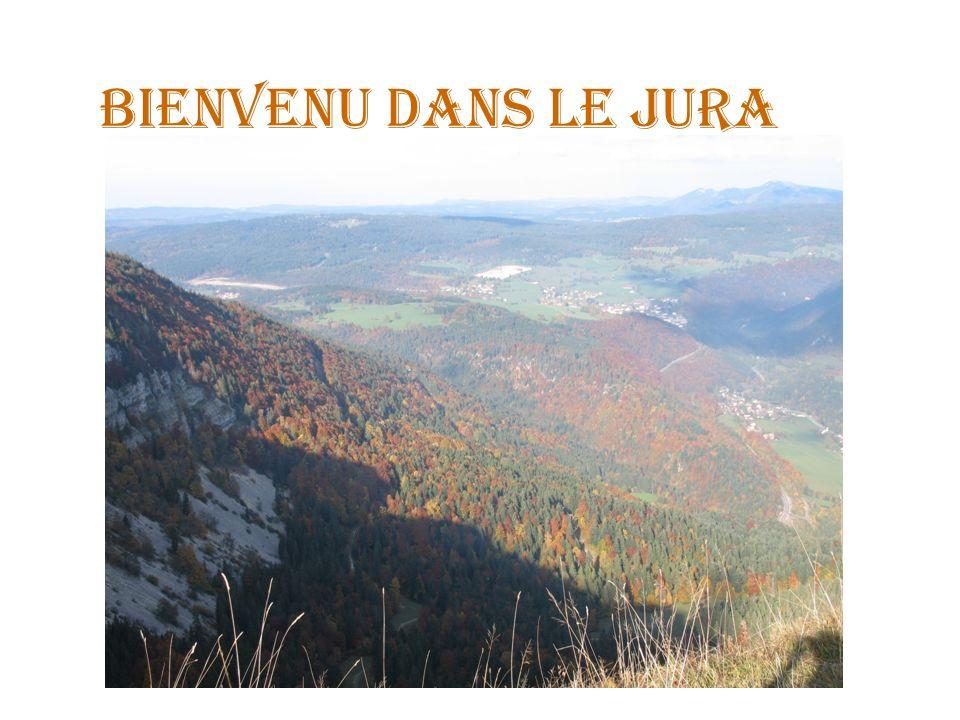 Bienvenu dans le Jura