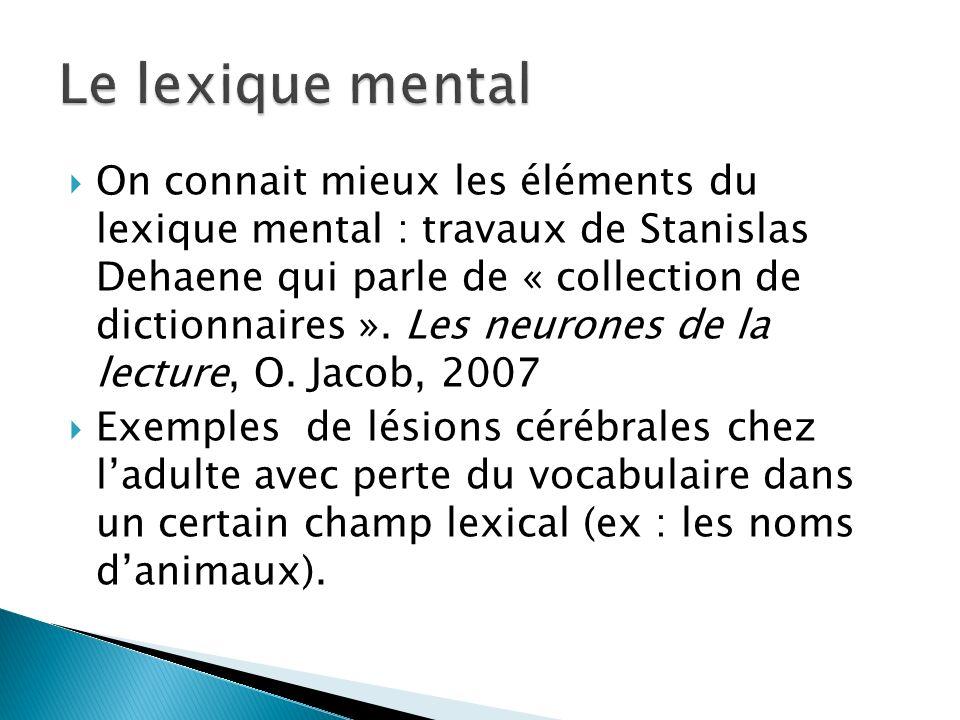 On connait mieux les éléments du lexique mental : travaux de Stanislas Dehaene qui parle de « collection de dictionnaires ». Les neurones de la lectur