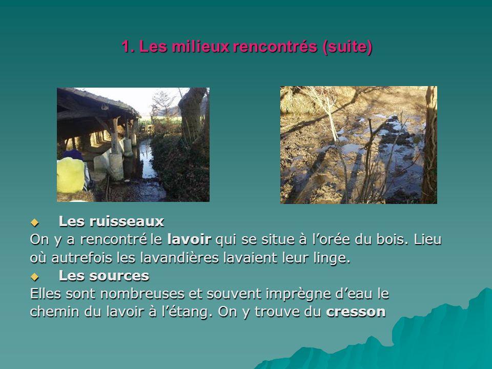 1. Les milieux rencontrés (suite) Les ruisseaux Les ruisseaux On y a rencontré le lavoir qui se situe à lorée du bois. Lieu où autrefois les lavandièr