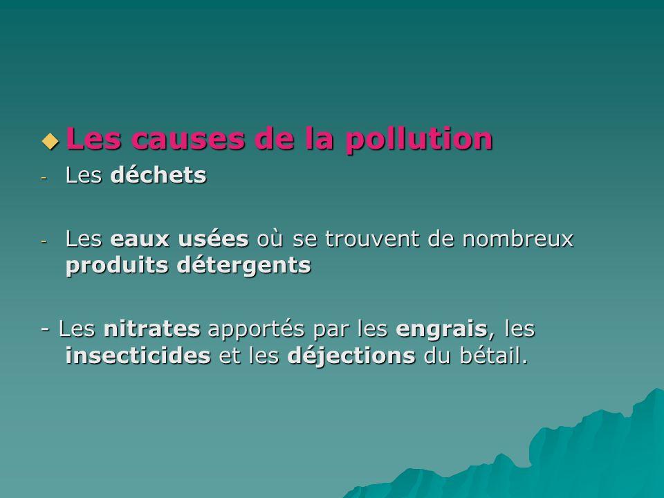 Les causes de la pollution Les causes de la pollution - Les déchets - Les eaux usées où se trouvent de nombreux produits détergents - Les nitrates app
