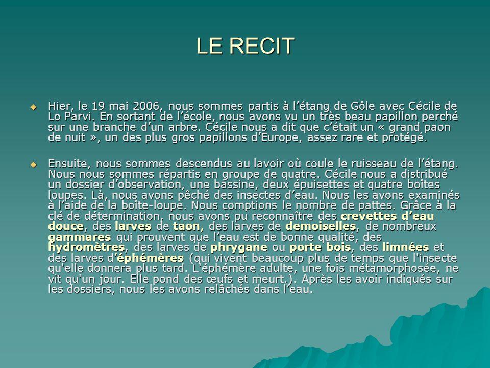 LE RECIT Hier, le 19 mai 2006, nous sommes partis à létang de Gôle avec Cécile de Lo Parvi. En sortant de lécole, nous avons vu un très beau papillon