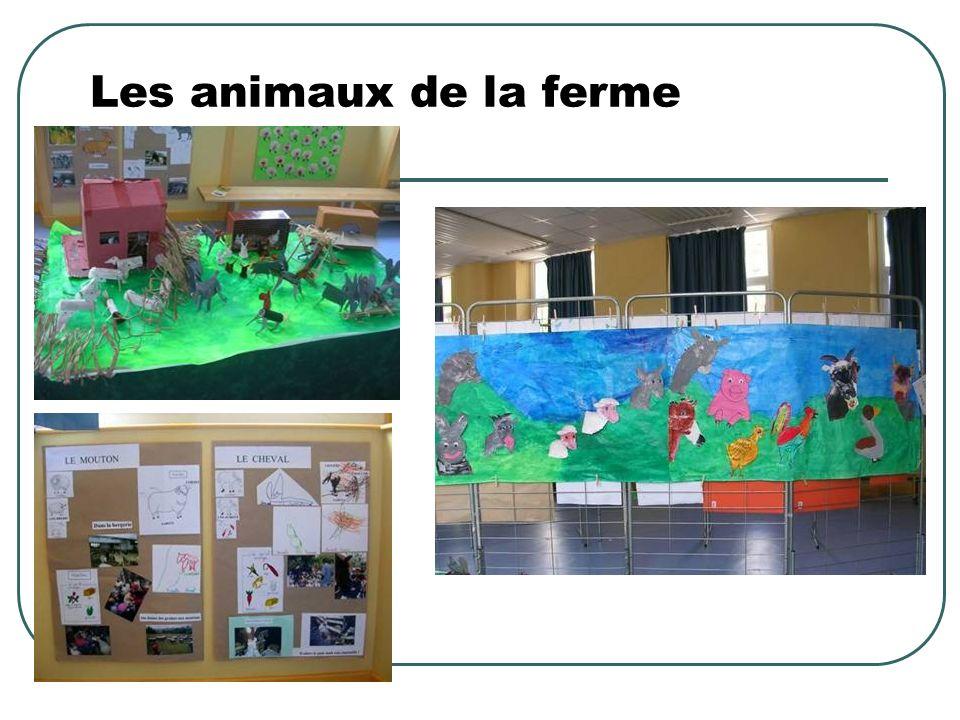 Les animaux de la montagne Moyenne Section Visite au Muséum dHistoire Naturelle
