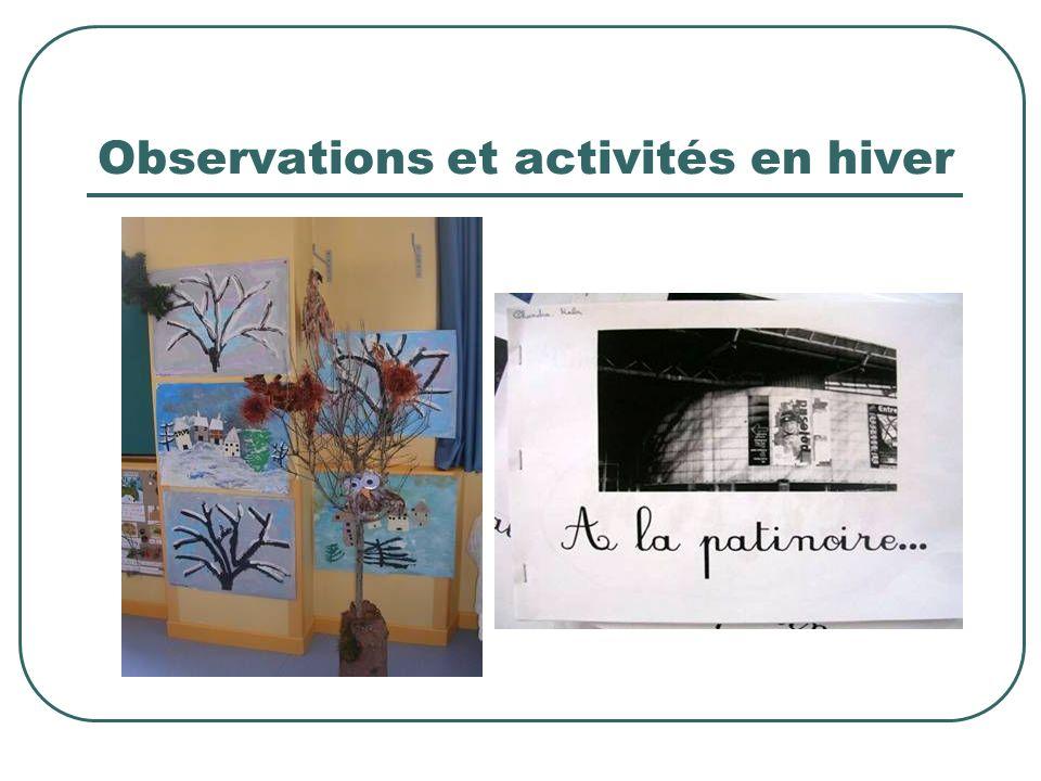 Observations et activités en hiver