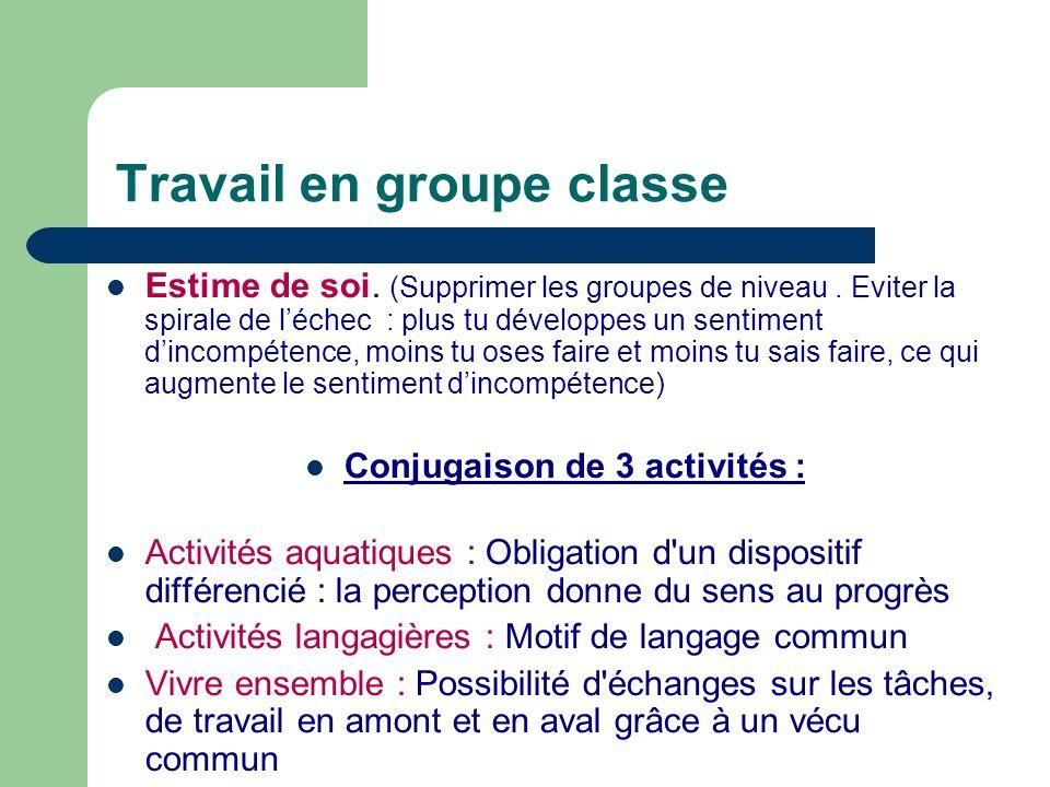 Travail en groupe classe Estime de soi. (Supprimer les groupes de niveau. Eviter la spirale de léchec : plus tu développes un sentiment dincompétence,