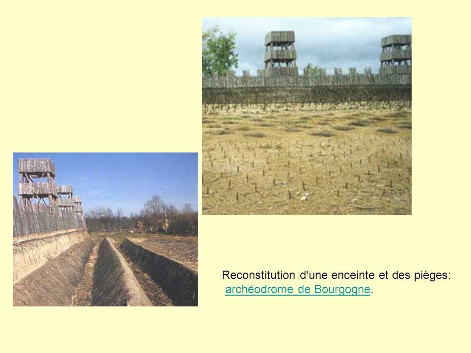 Reconstitution d'une enceinte et des pièges: archéodrome de Bourgogne.archéodrome de Bourgogne