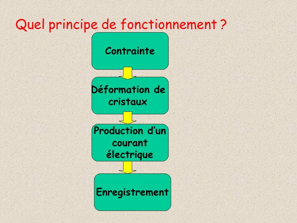 Quel principe de fonctionnement ? Contrainte Déformation de cristaux Production dun courant électrique Enregistrement