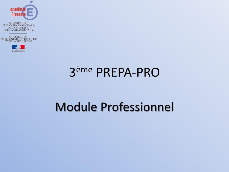 3 ème PREPA-PRO Module Professionnel