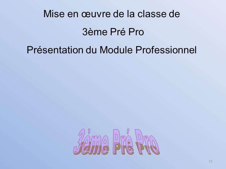 11 Mise en œuvre de la classe de 3ème Pré Pro Présentation du Module Professionnel