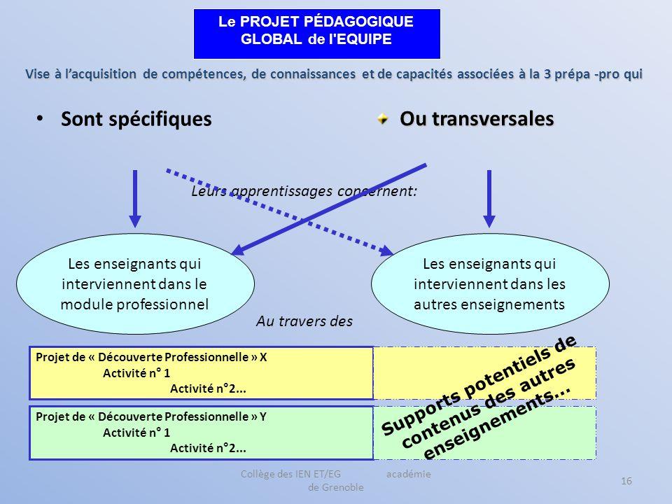 Collège des IEN ET/EG académie de Grenoble 16 Sont spécifiques Vise à lacquisition de compétences, de connaissances et de capacités associées à la 3 p